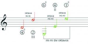 oktavos