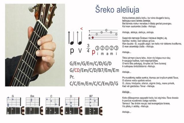 12 gitaros pamoka