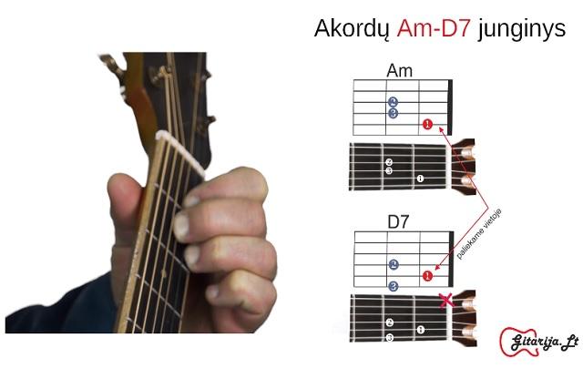 5 gitaros pamoka