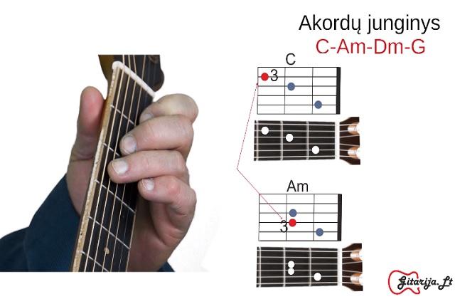 3 gitaros pamoka
