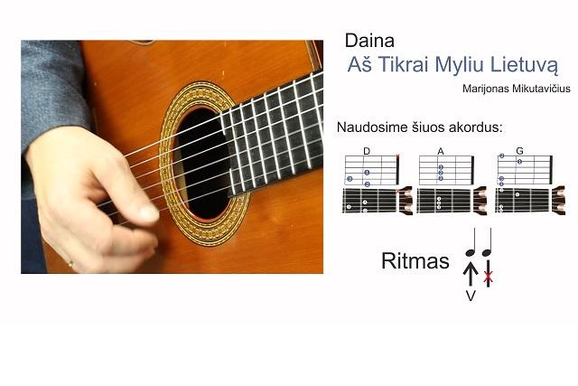 6 gitaros pamoka